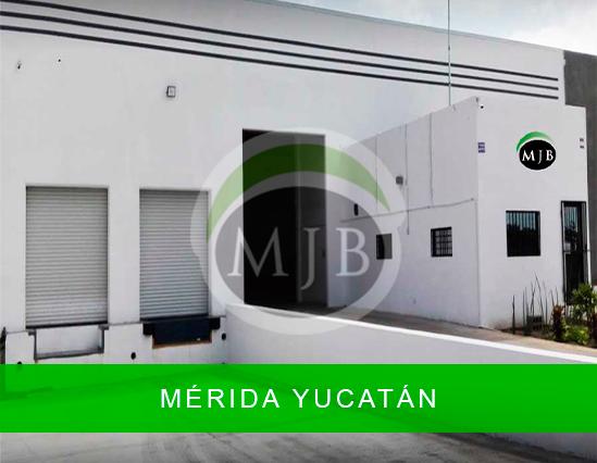 mjb-merida-yucatan-merida-1.jpg